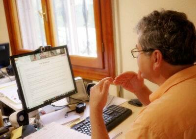 World Idiomas Aranjuez online English